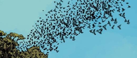 The Massive - Birds